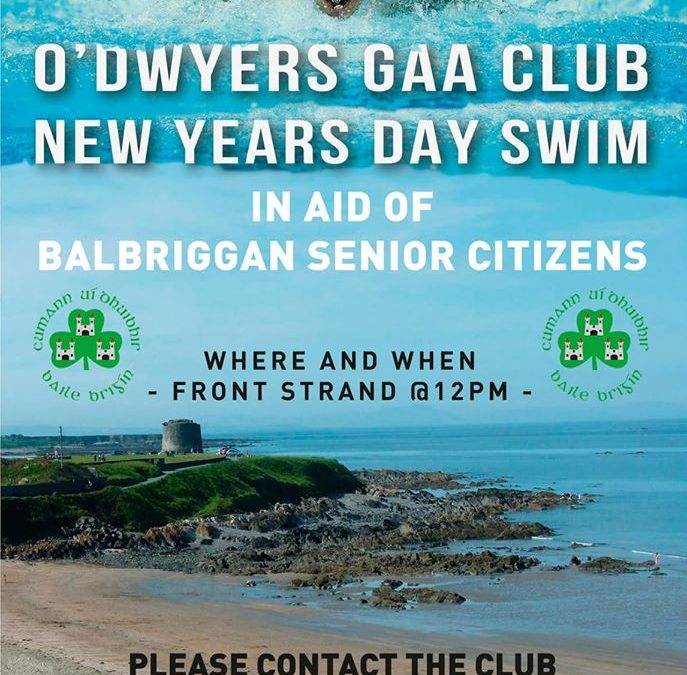 O'Dwyers New Year Day Swim